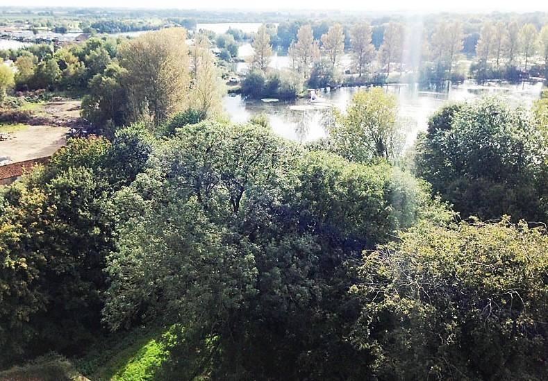 Gattington Park